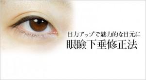 目力アップで魅力的な目元に 眼瞼下垂修正法